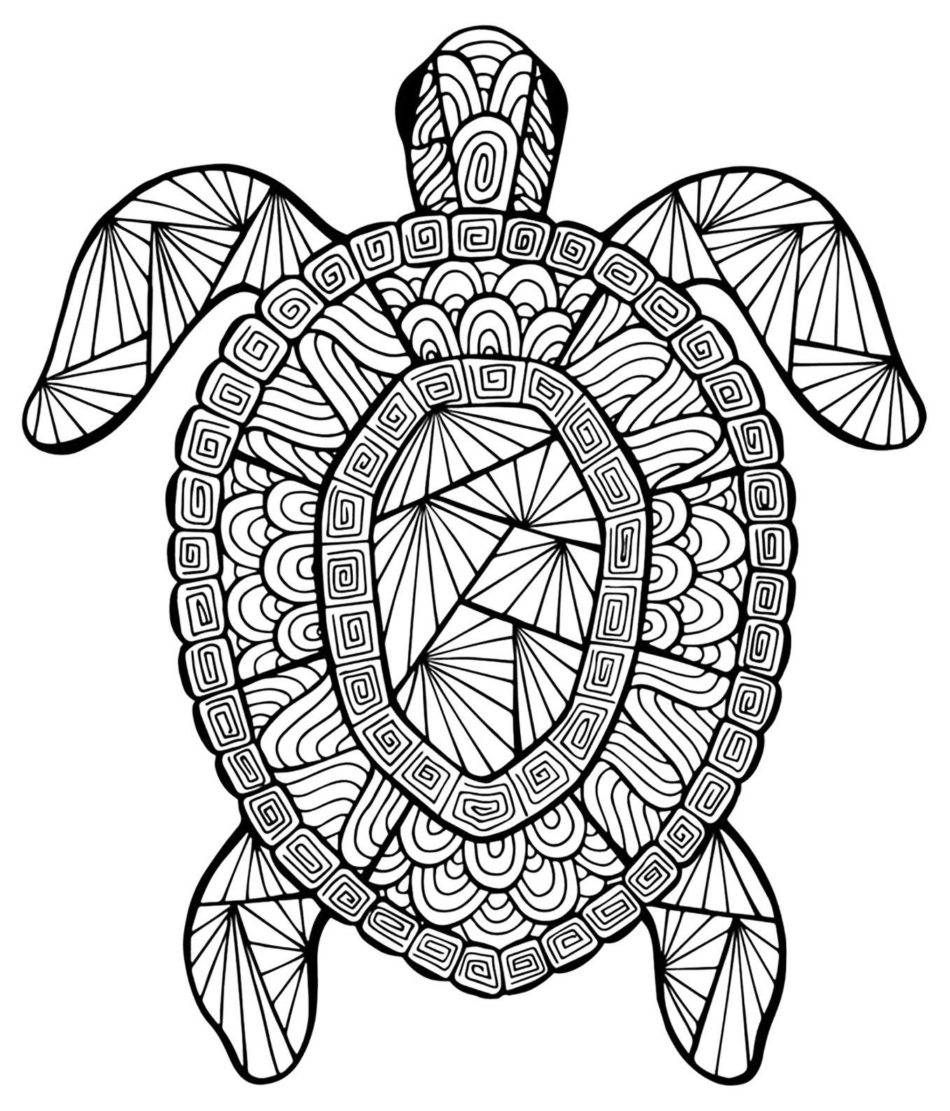 Turtle Coloring Pages Incredible Turtle Turtles Adult Coloring Pages