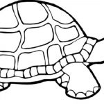 Turtle Coloring Pages Print Download Turtle Coloring Pages As The Educational Tool