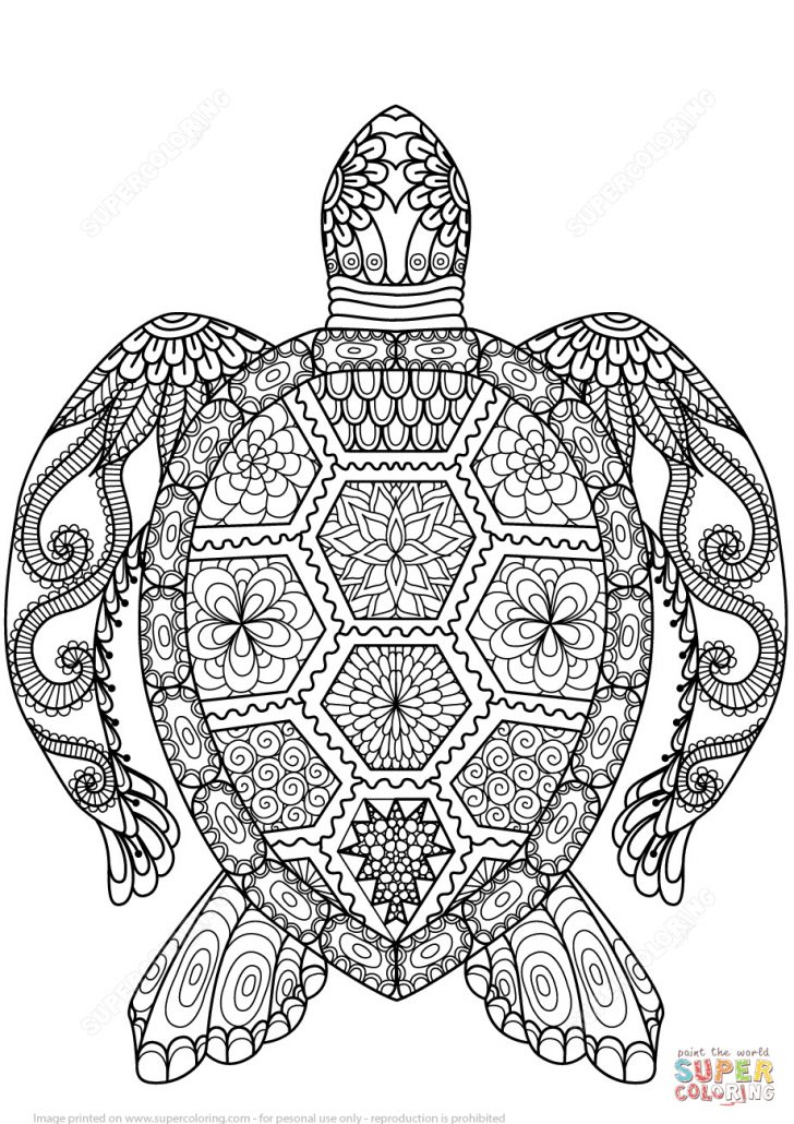 Turtle Coloring Pages Turtle Zentangle Coloring Page Free Printable Coloring Pages