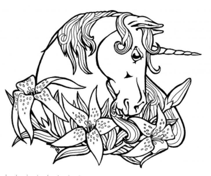 Unicorn Coloring Pages For Adults Unicorn Coloring Pages For Adults Beautiful Color Book Pages Awesome