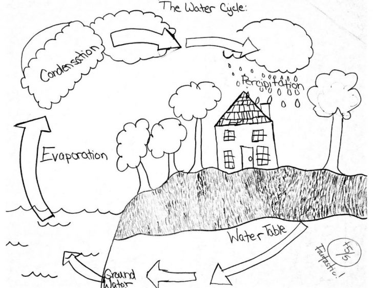 Water Cycle Coloring Page Coloring Pages Coloring Pages Waterycle Page Free Worksheets