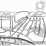 Water Cycle Coloring Page Water Cycle Drawing At Getdrawings Free For Personal Use Water