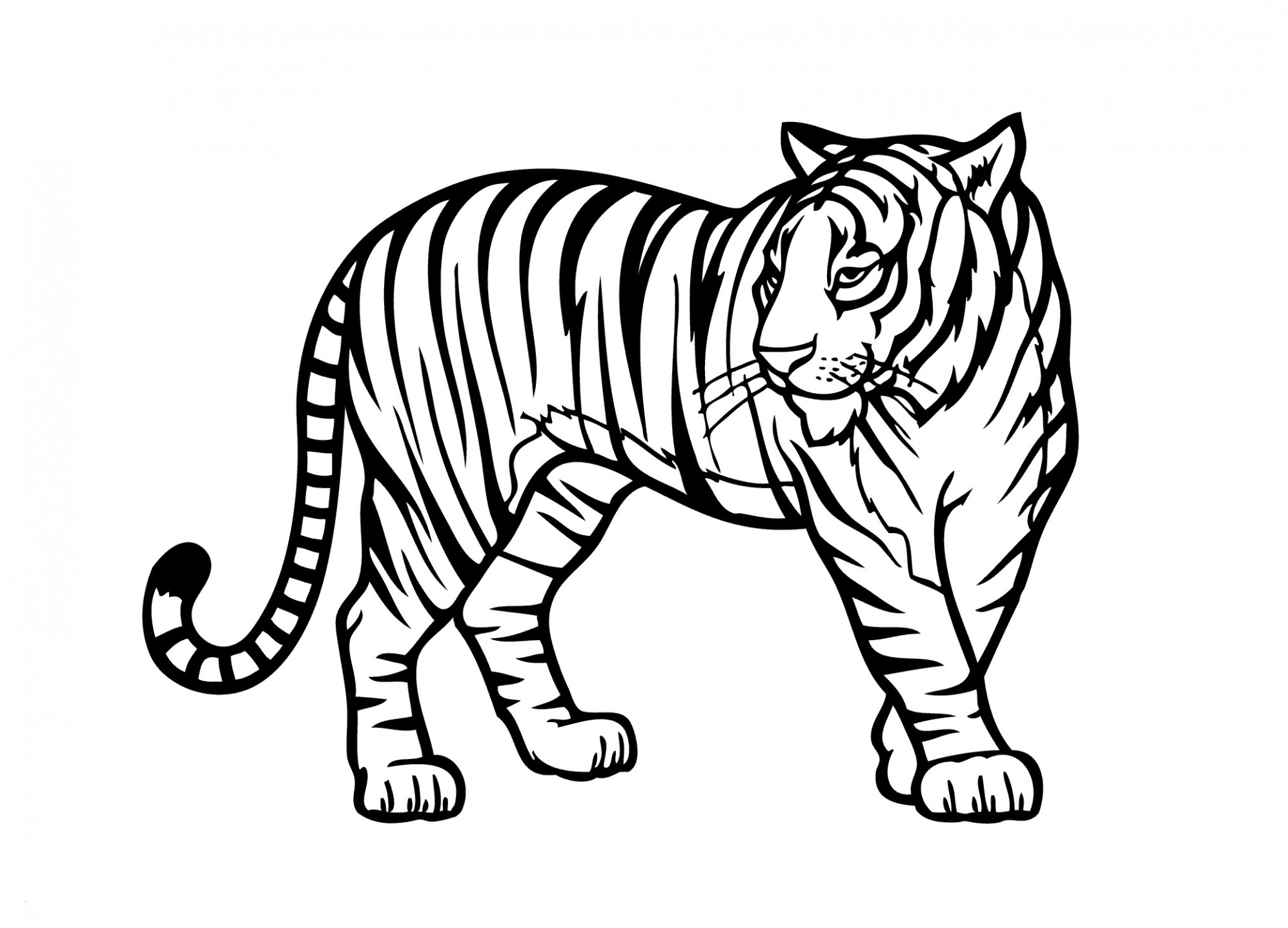 Zoo Animals Coloring Pages Coloring Pictures Of Tigers Zoo Animals Coloring Pages Elegant Rick