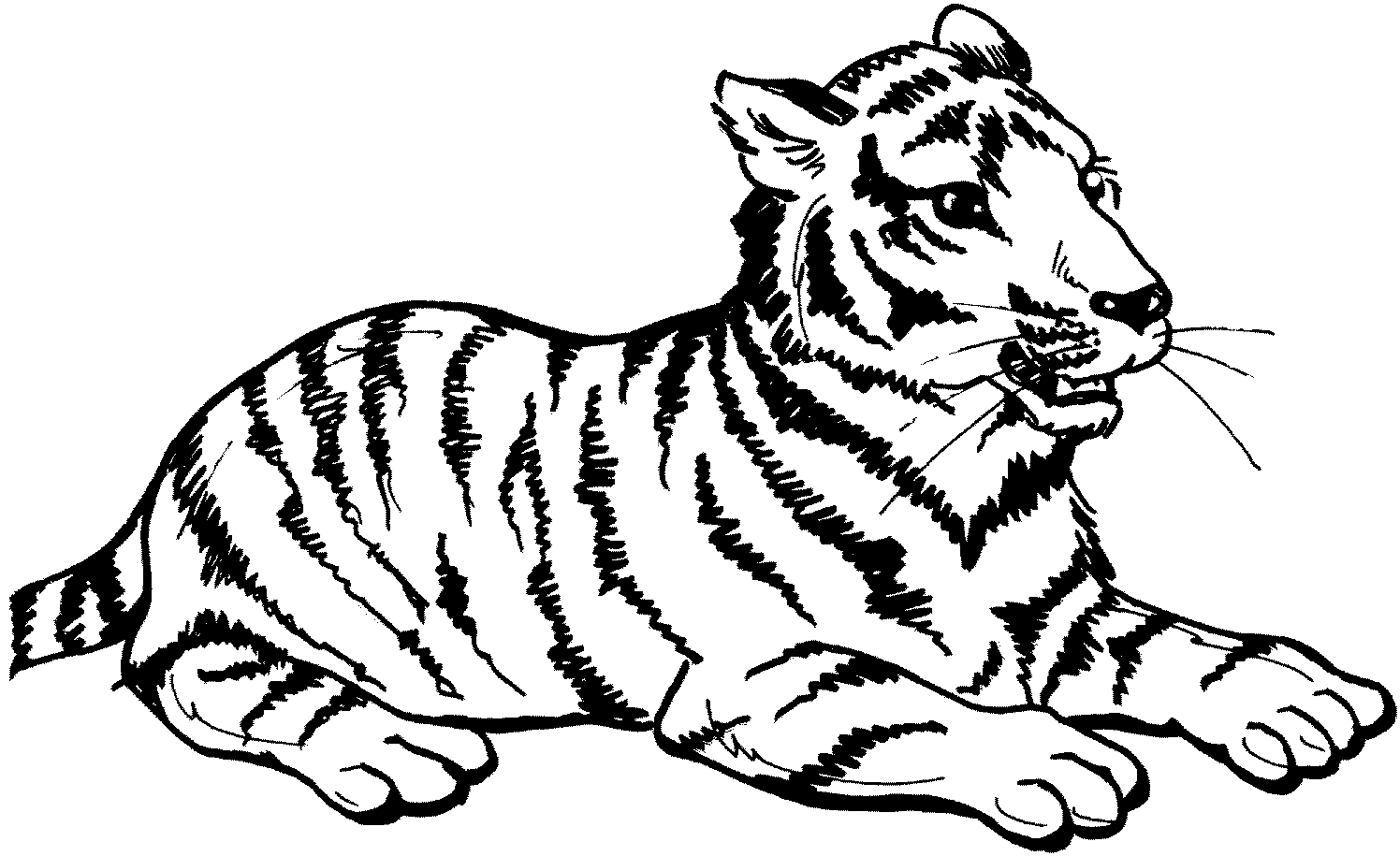Zoo Animals Coloring Pages Zoo Animals Coloring Pages Coloring Ideas