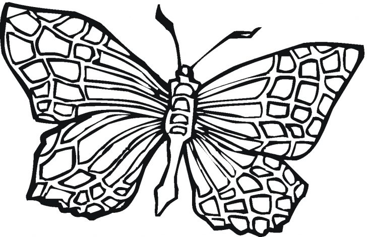 27 Exclusive Photo of Free Butterfly Coloring Pages