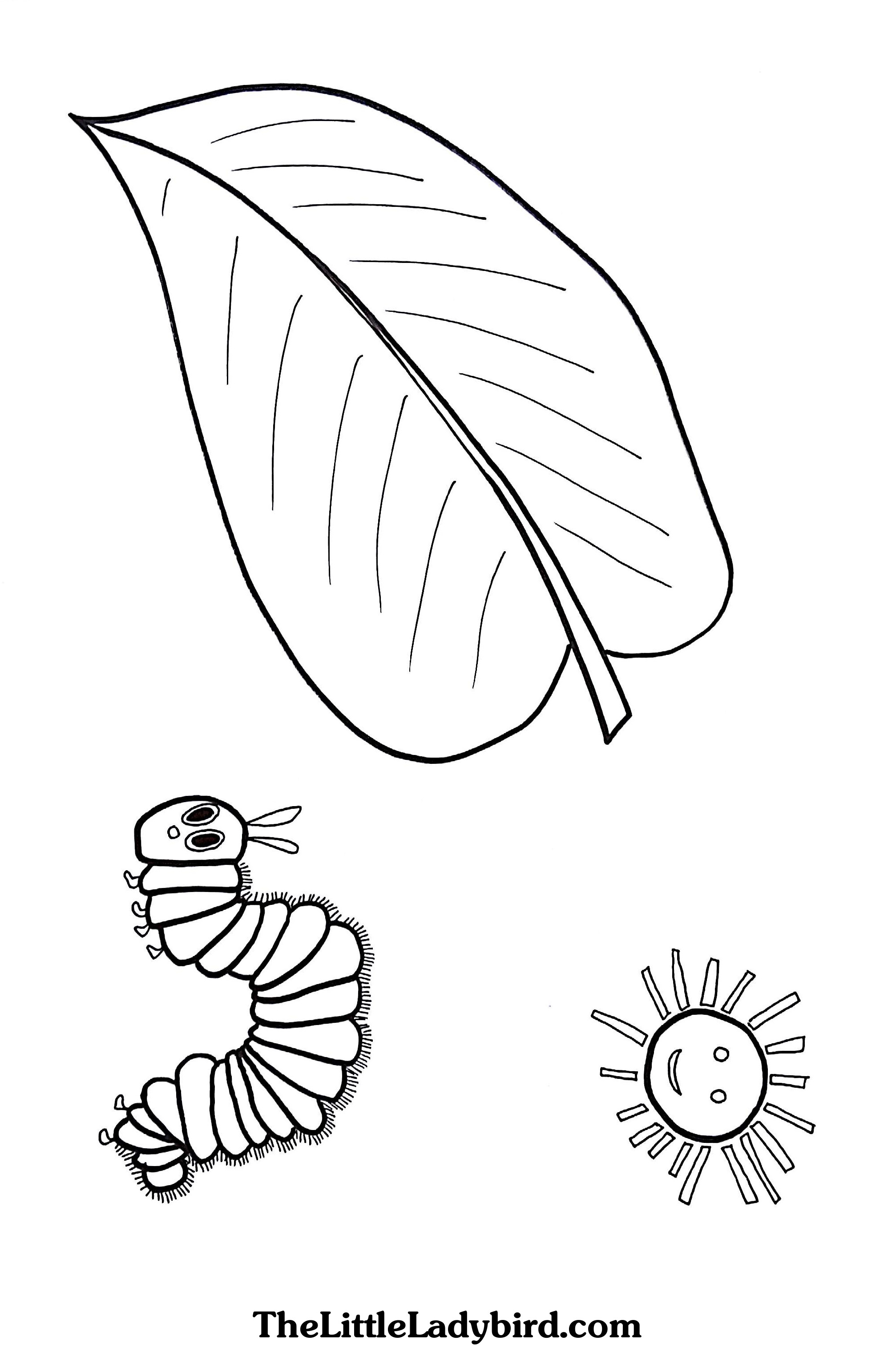 Hungry Caterpillar Coloring Pages Free The Very Hungry Caterpillar Coloring Page Thelittleladybird