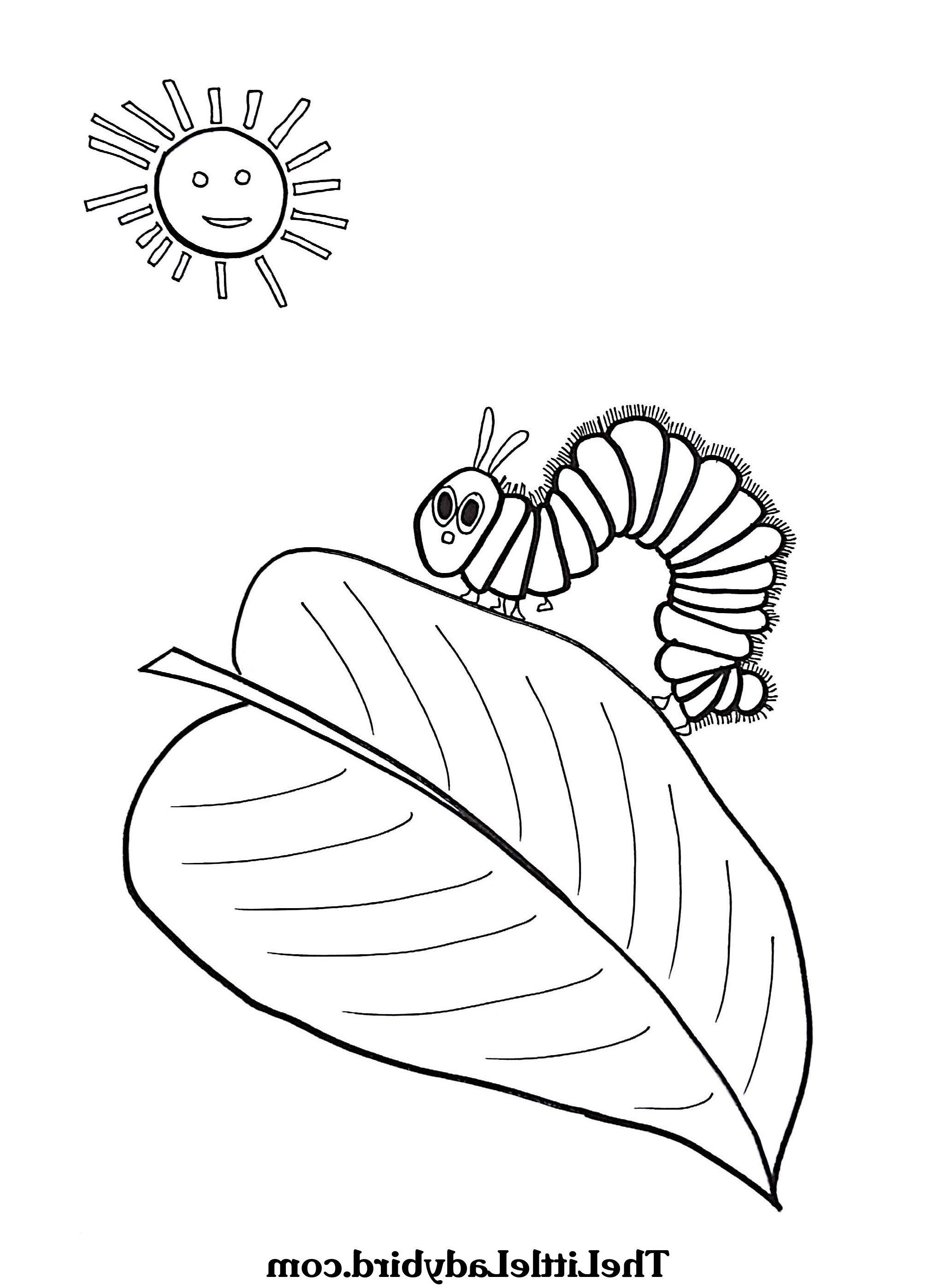 Hungry Caterpillar Coloring Pages Very Hungry Caterpillar Coloring Page Dxjz Free The Hungry