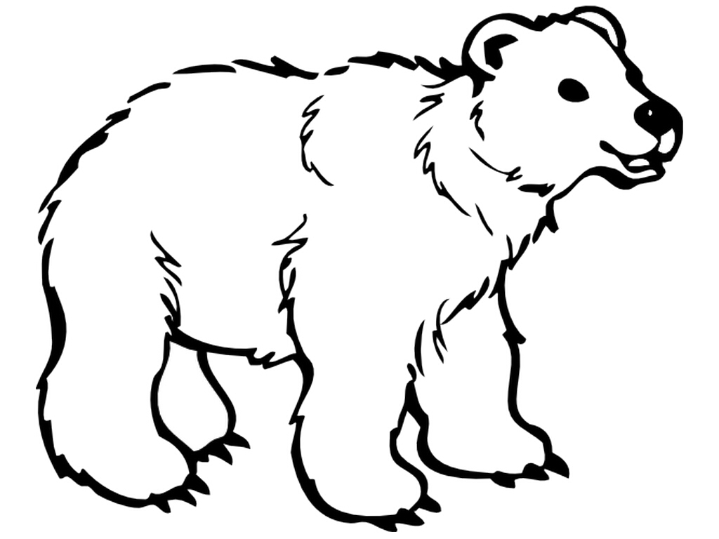 Polar Bear Coloring Pages Cute